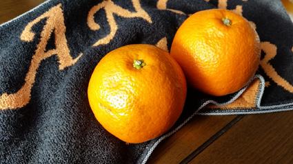 オレンジはよく熟していて甘かったです。
