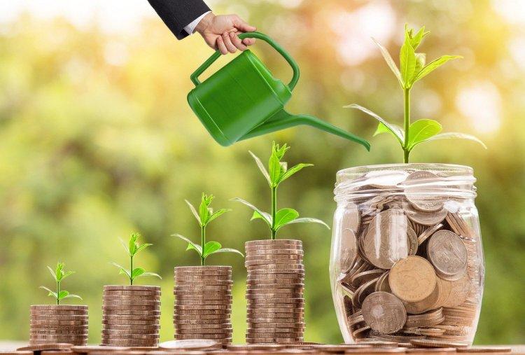 Med litt mer omsorg kan du få pengene dine til å vokse fortere.