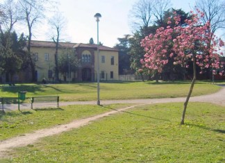 Parabiago_corvini_parco_storico_droga