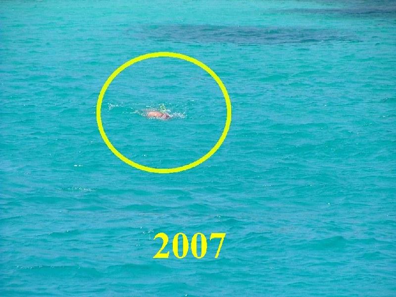 Budelli 1  Liberissimonet notizie in tempo reale isola di La Maddalena Sardegna News flash