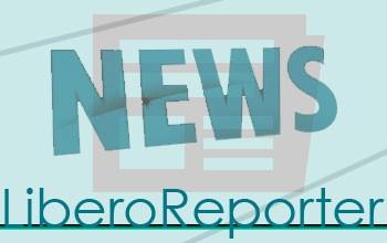 news-new-verde