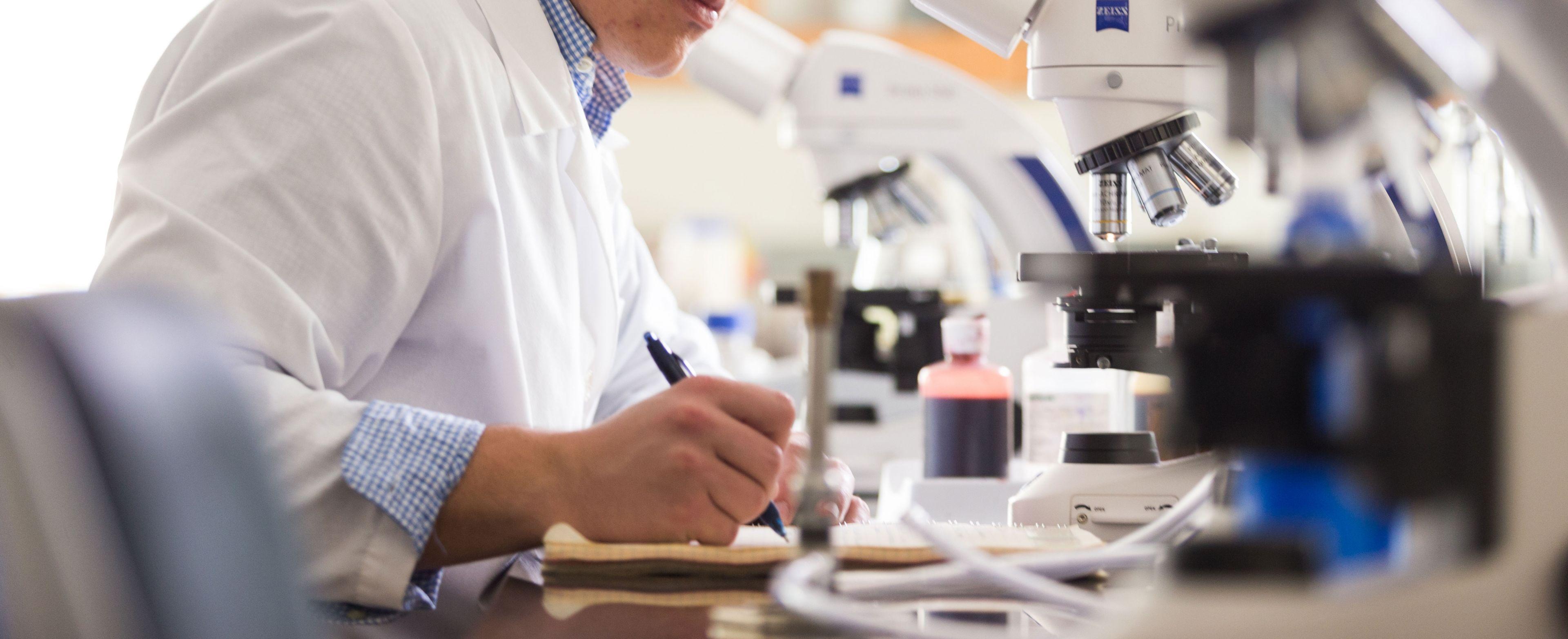 Biochemistry And Molecular Biology Bachelor S Degree