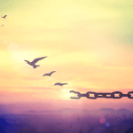 Bird Breaking Chains Fly Freedom