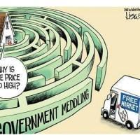 Meddling in the Free Market