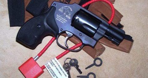 Oregon Anti-Gunners Launch Gun Control Initiative
