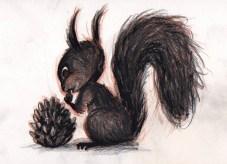 un ecureuil noir grignote une pomme de pin