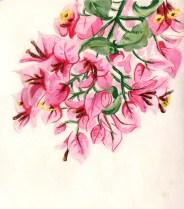 fleur-aquarelle