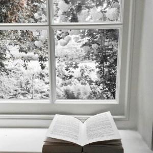 livre hiver neige