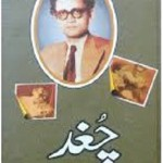 Chughad By Saadat Hasan Manto Download Pdf Free