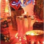 Aathween Mohabbat Novel by Anwar Aligi Pdf