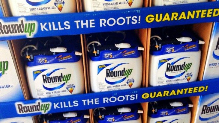 Roundup-kills-the-roots-guaranteed