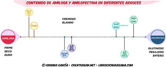 Contenido de amilosa y amilopectina en diferentes arroces - Notas sobre el Kao Mun - Libro Cocina Vegana
