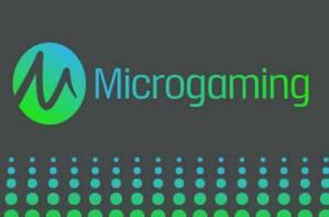 ソフトウェアのマイクロゲーミング
