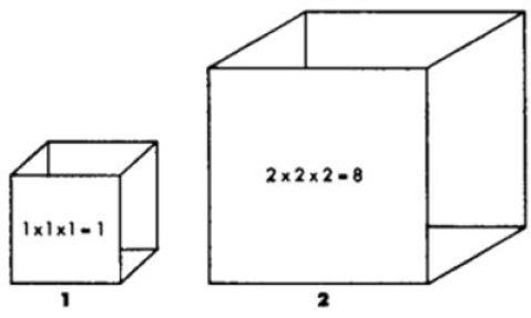 Resultado de imagen para galileo dijo la ley del cuadrado cubo
