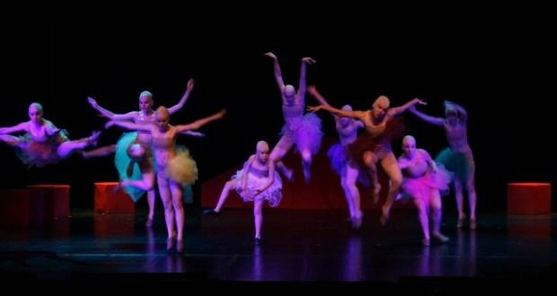 gradina dance art