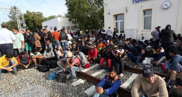 tovarnik migranti