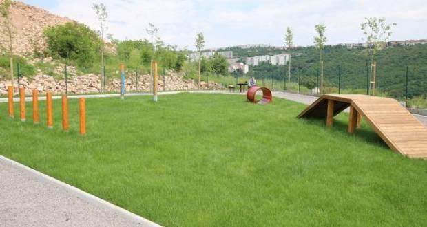 Novi park
