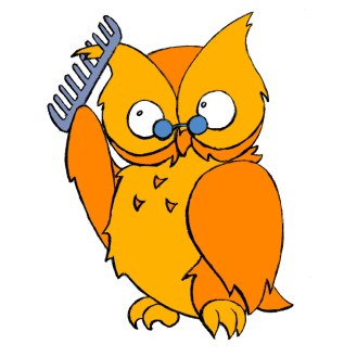 Owl Combing Head Lice Removal Service and Treatment