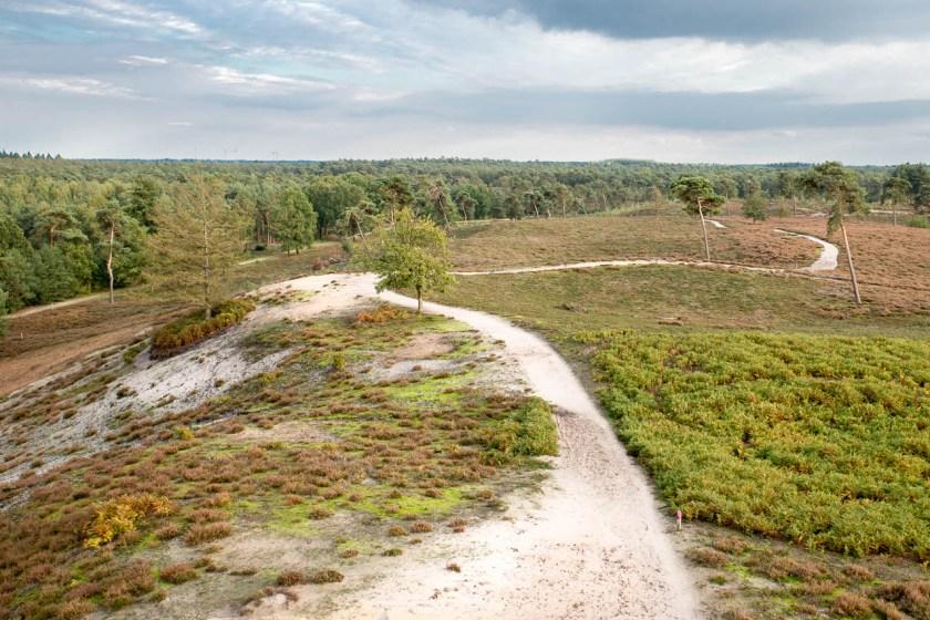 Blick vom Aussichtsturm über den Nationalpark De Maasduinen