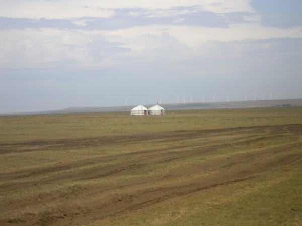 מאהל מונגולי