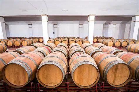 La producción del vino y las bondades del roble americano