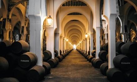 Bodegas Fundador, nominada una vez más a 1ª Bodega Productora de Brandy