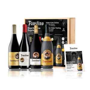 Pack Faustino red wine experience