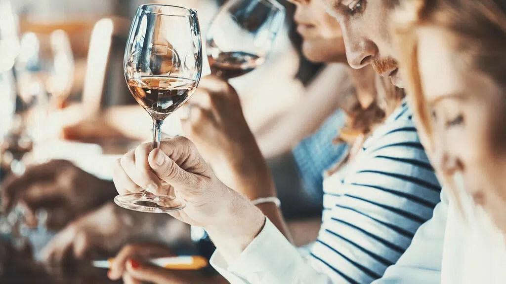 El vino: la importancia de los sentidos en la cata (Parte 2 y Final)