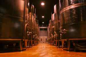 Champions Wine 2020