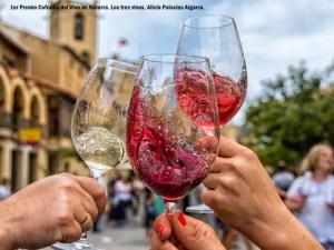 ruta-del vino-navarra-3