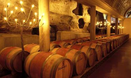 Viñas del Vero, un referente de la viticultura respetuosa