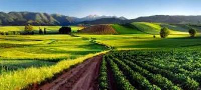 AsociacionIndustriaAuxiliar en La Rioja