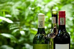 Vinos sudafricanos sufrirán con nueva prohibición