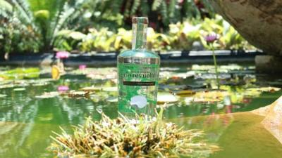 Río Revuelto, mezcal de 46º de volumen de alcohol