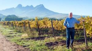 Los viñedos sudafricanos se alistan para la vendimia
