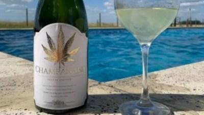 """""""Champanabis"""", es una bebida que mezcla espumante con marihuana."""