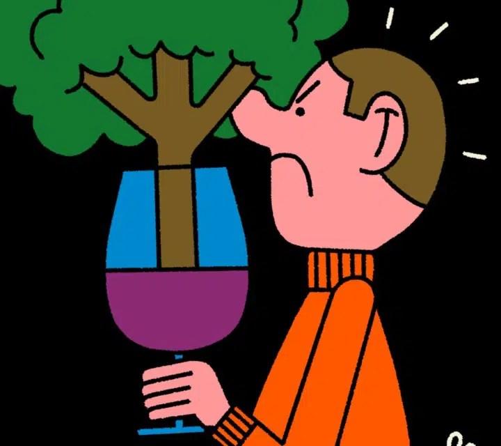 Elaboración del vino: ¿declive de la barrica de roble?