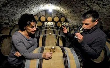Denis Pommier: «Detrás de una botella de vino hay una historia de trabajo humano»
