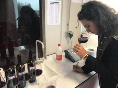 nueva generación de vinos