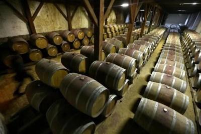 La producción mundial de vino