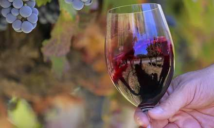 Día Nacional del Vino en Estados Unidos: una fecha para celebrar