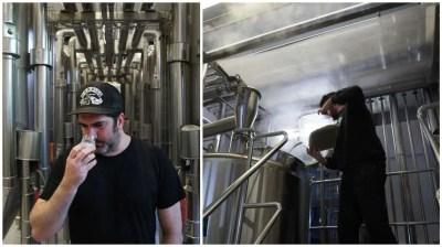 cervecería artesanal