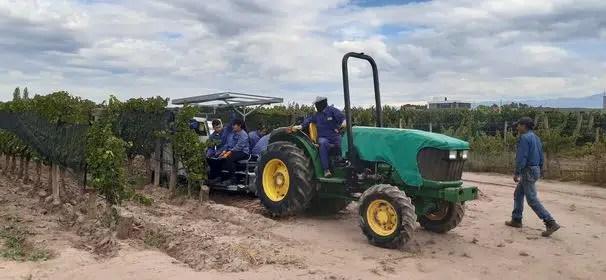 Invento RINDE Mendocino: «Para hacer más fácil la vida del viticultor»