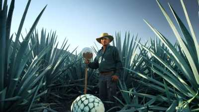 Tequila Patrón