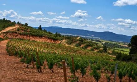 Risky Grapes: «Vinos mediterráneos muy fieles al terruño»