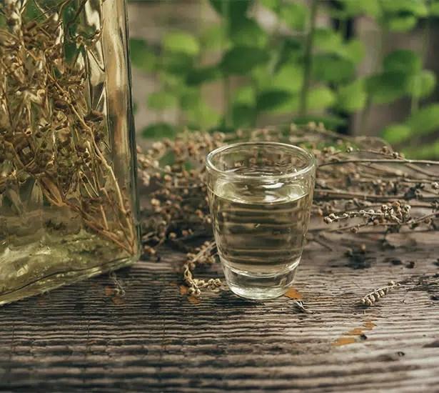 Rakija Travarica, el licor tradicional de Croacia con propiedades curativas