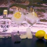 gin-copas-limon-2