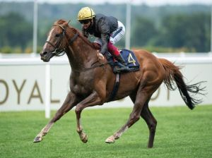 From Pedigree | Stradivarius for their 4th Gold Cup at Ascot