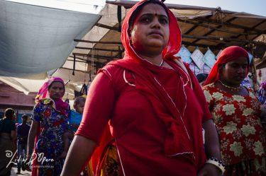 Jodhpur-M91016432