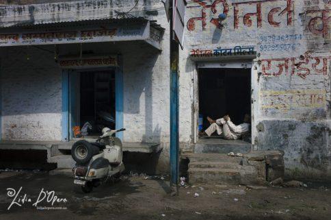Jodhpur-M91020136